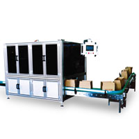 SNB-08 Ice Cream Carton Packer, Ice Cream Packing Machine